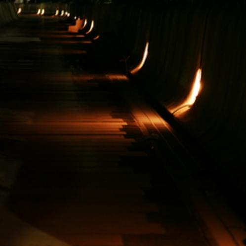 *ライトアップされた遊歩道をぶらり♪