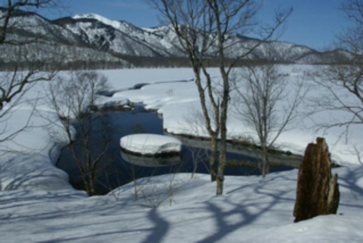 尾瀬の雪どけ