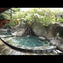 公園内の木々を見ながら入れる露天風呂