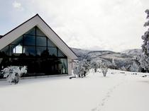 冬の天城高原
