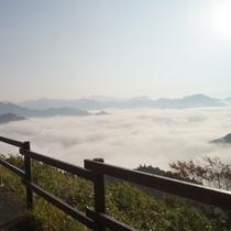 【周辺観光】国見ヶ丘/標高513mから望む美しい雲海
