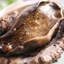 海の宝石「あわび」。香住産は特にうまい!