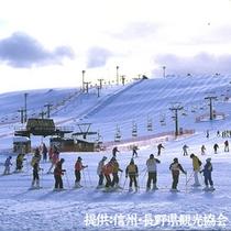 ファミリ―ゲレンデ 霧ヶ峰スキー場(当館から車で約30分)