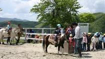*【乗馬体験】初心者でも安心です。