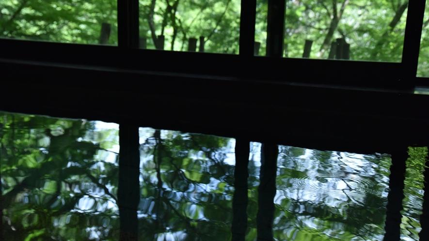 *【温泉浴場】ゆらめく渓谷の影と湯