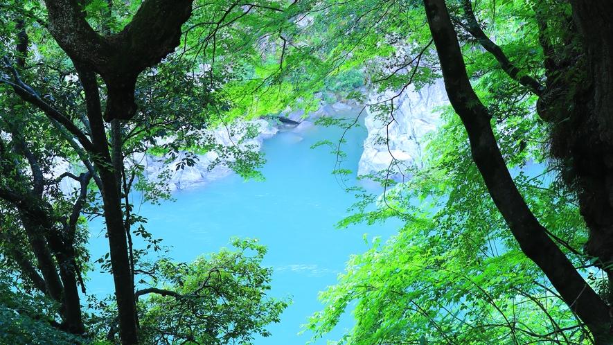 *【館内】天龍川を望む