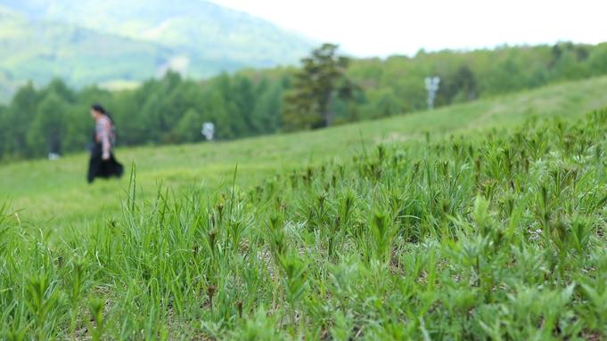 【早割28】★28日前迄のご予約で¥550引き★アクティビティから星空観察まで!志賀高原を遊びつくせ