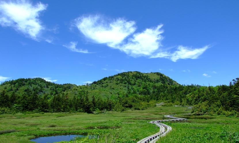 【夏】四十八池湿原。空の青に心奪われます