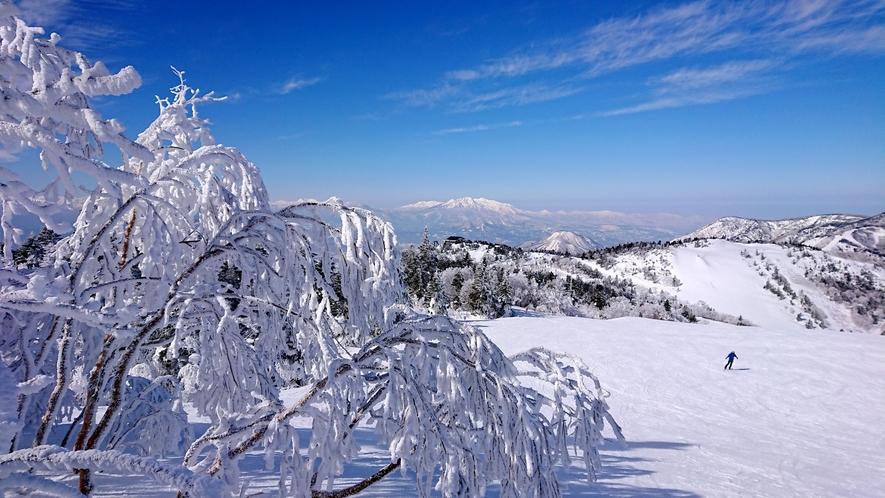 【冬】最高のお天気♪