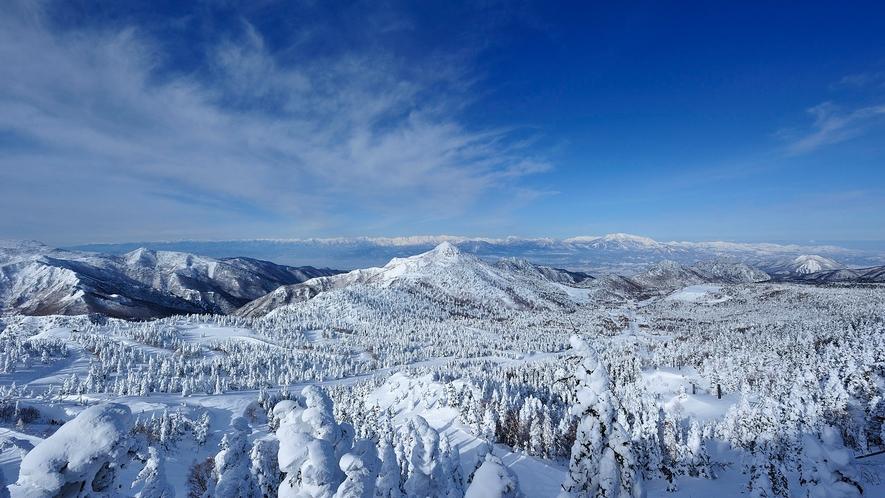 【冬】志賀高原の雪景色。