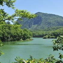 ■【夏】琵琶池。志賀高原で2番目に大きい池です