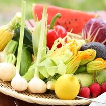 ■【夏・BBQ】旬の野菜が盛りだくさん!