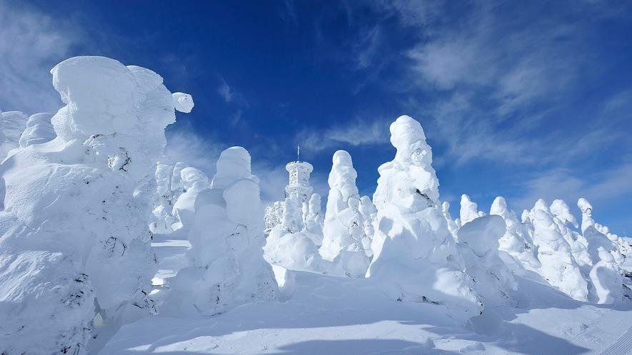 【冬】志賀高原雪景色