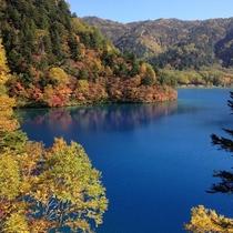 ■【秋】紅葉(大沼池)