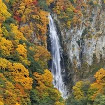 ■【秋】紅葉(澗満滝)