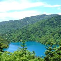■【夏】コバルトブルーの大沼池。不自然なほどに鮮やか
