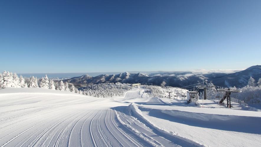 【冬】最高の雪質で、気持ち良く滑れます。