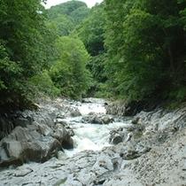 中津川渓谷(レイクライン)