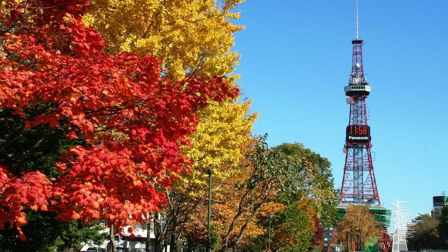 大通り公園紅葉