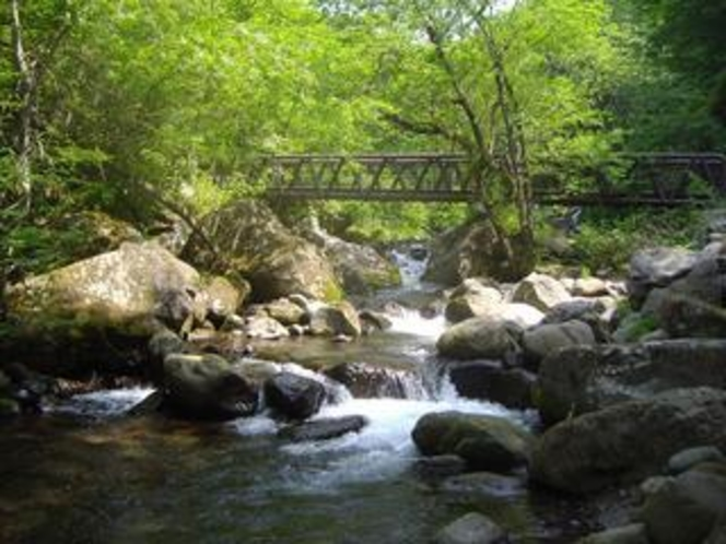 春から夏の川俣渓谷