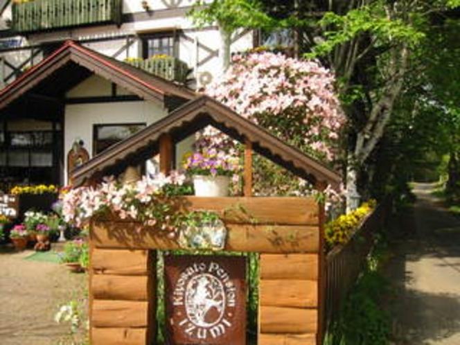 看板のモンタナの花