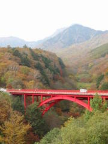 紅葉の清里高原