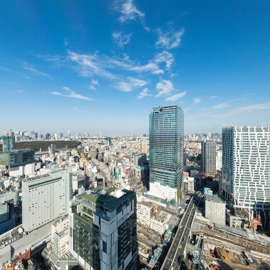 【9月限定】32階以上高層階&渋谷・新国立競技場・新宿方面眺望確約 エグゼクティブフロア