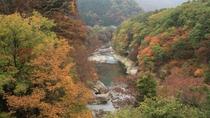 ■展望露天風呂から見える渓谷美 紅葉