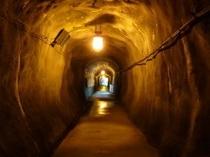 【朝のさわやか散歩】旧軌道トンネル