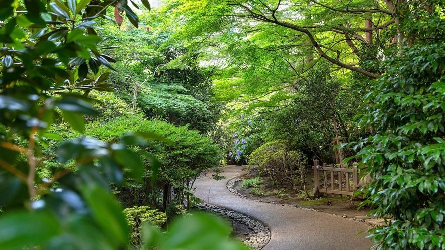 ホテル敷地内にある日本庭園は遊歩道が整備されているので、散策におすすめです。