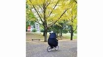 【貸出自転車】