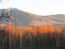 秋のアンヌプリ
