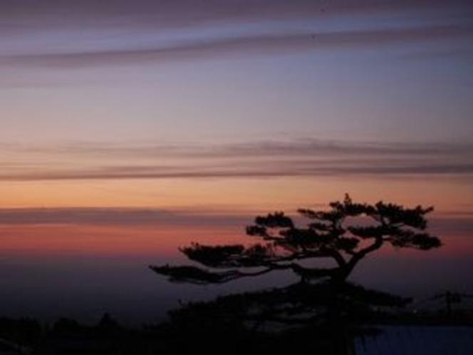 朝靄の雲海