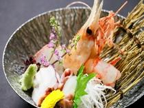 ボタン海老と日本海の幸盛合せ