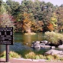 *[周辺観光]五色沼の紅葉シーズンはトレッキングに最適