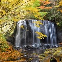 *[周辺観光]美しい紅葉の風景を楽しめる秋の達沢不動滝