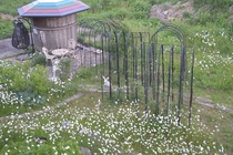 モンターニャの庭