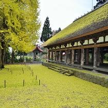 *[周辺観光]紅葉のじゅうたんが風情のある秋の長床熊野神社