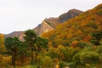 紅葉の磐梯山
