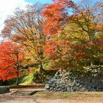 *[周辺観光]紅葉の季節は特にお勧め!秋の猪苗代亀ケ城跡公園