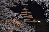鶴ヶ城の夜桜ライトアップ