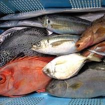 海鮮鍋の魚
