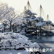 冬の風物詩「雪吊り」。雪の重みで枝が折れないように…昔ながらの技法です。