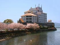 ホテル横の桜並木を散策してみませんか