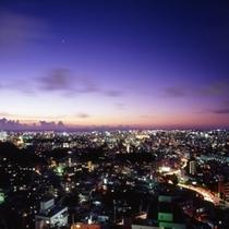 夜景(明)