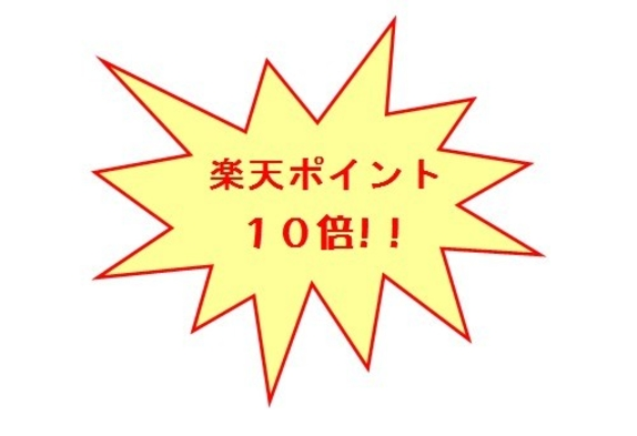 【連泊割!ポイント10倍プラン】