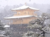 【冬】雪化粧の金閣寺・市バス「金閣寺前」下車すぐ