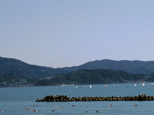 和歌浦湾:セーリングやクルーズ、ダイビング、ウインドサーフィンなどマリンスポーツに最適!