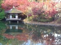 紅葉渓庭園2(イメージ)