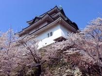 和歌山城;満開の桜に包まれた和歌山城天守閣(路線バスで約10分)